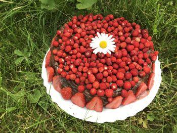 Čokoládovo jahodový dort